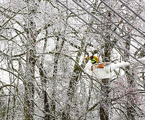 An Atlantic City Electric crew member works to restore power