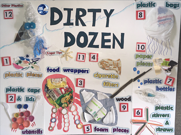 Dirty Dozen 2016