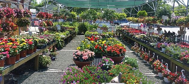 Coppola's Garden Center