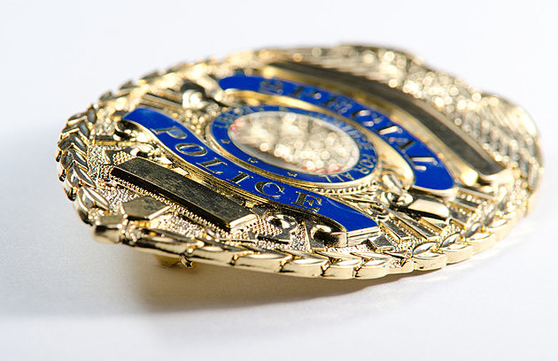 a close up of a generic looking police badge.
