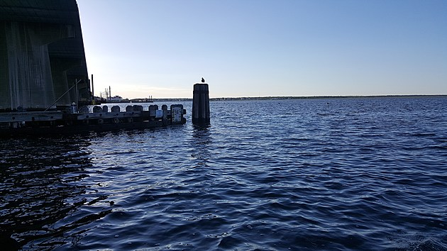 Blue sky and a blue Manahawkin Bay, under the Rt. 72 bridge.  (Photo: Dan Zarrow)