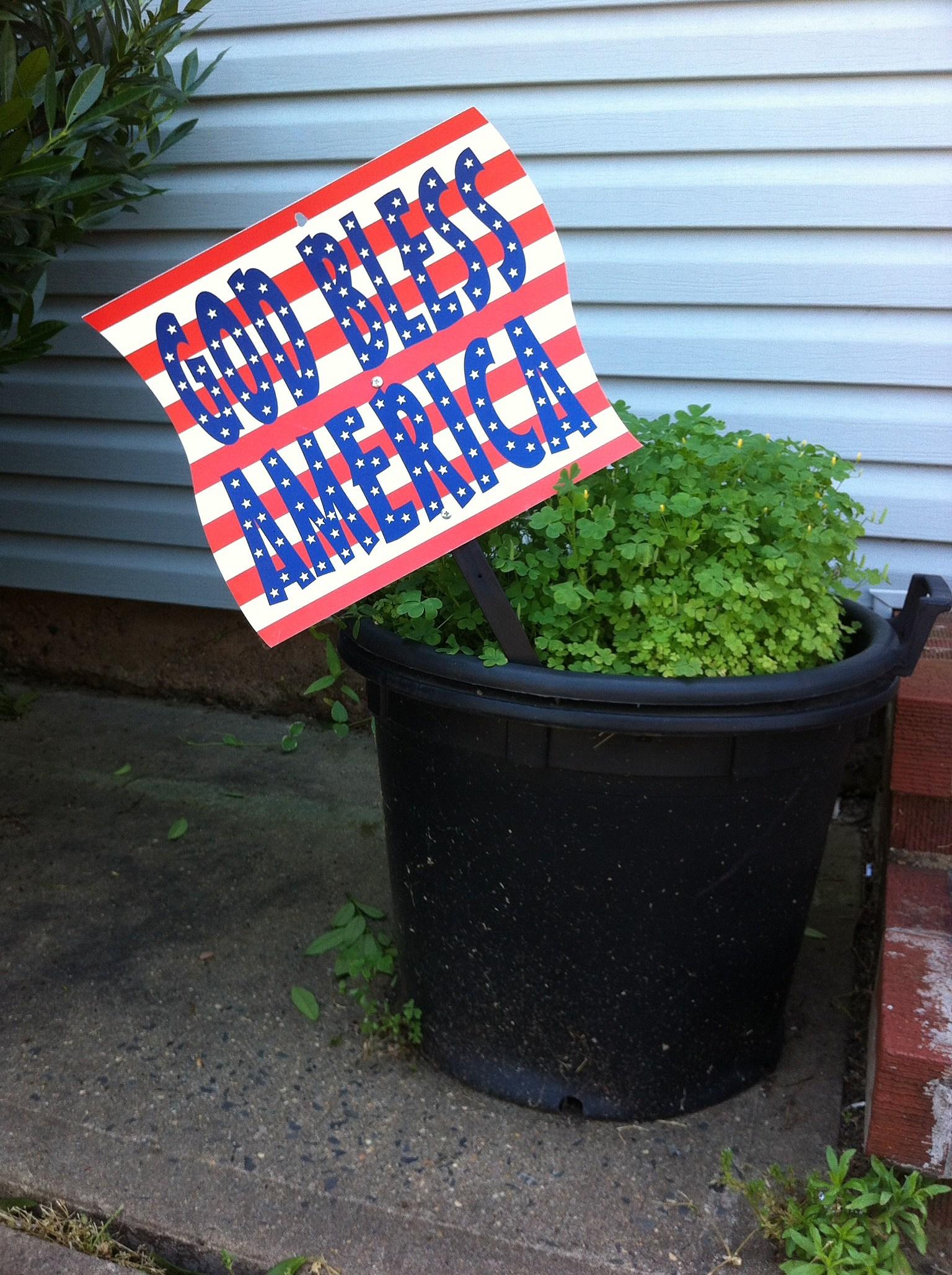 Let patriotism bloom forth! (Craig Allen photo).