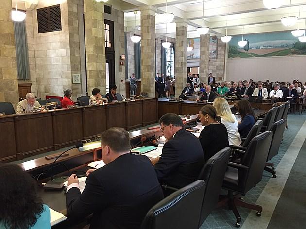 Seton Hall Law School professor John Jacobi testifies at a legislative hearing. (Michael Symons/Townsquare Media NJ)
