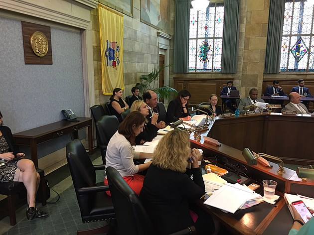 Lawmakers listen to testimony at a hearing about reorganizing the state's oversight of mental health and addiction services on July 25, 2017. (Michael Symons/Townsquare Media NJ)